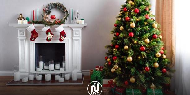Noël : pas besoin d'acheter un sapin, vous pouvez désormais le louer !