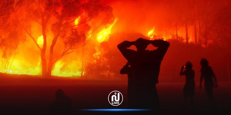 Jedaïda : Un incendie s'est déclenché à Djebel Hamed