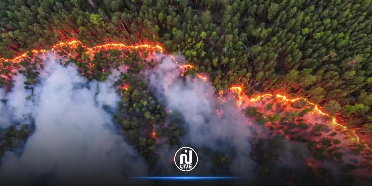 Des incendies massifs qui ravagent les forêts sibériennes