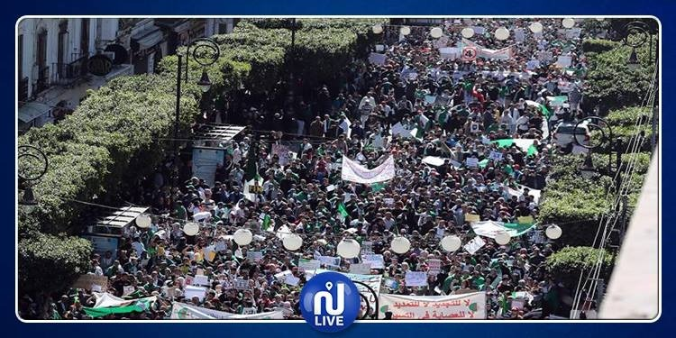 الجزائر: تجدد المظاهرات المطالبة باستقالة بوتفليقة فورا