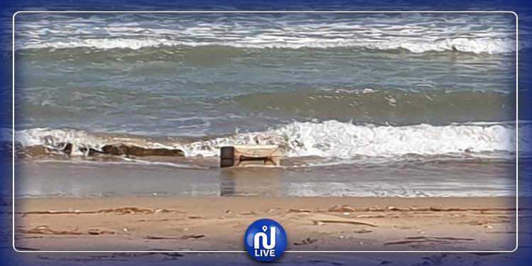 نابل: البحر يلفظ عشرات الكيلوغرامات من ''الزطلة''