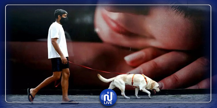 نفوق أول كلب أصيب بفيروس كورونا