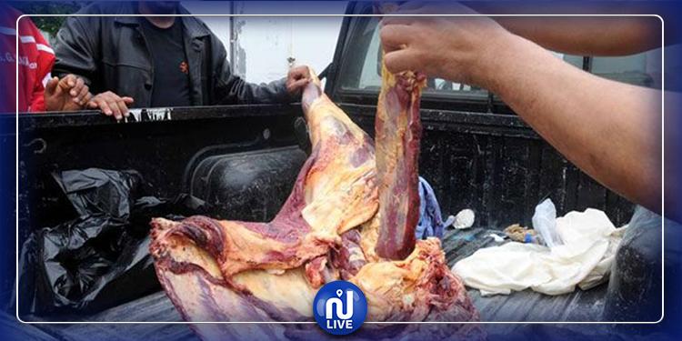 حي النصر: حجز كميات هامة من اللحوم والأجبان غير صالحة للاستهلاك