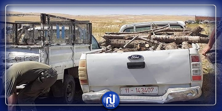 الكاف: حجز شاحنة محملة بالحطب الاخضر (صور)
