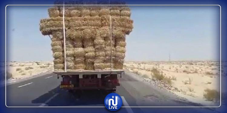 حريق في حمولة تبن يتسبب في تعطيل الحركة بطريق السيارة تونس-الحمامات