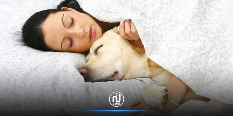 إصابات خطيرة  لإمرأة عضها كلبها أثناء نومها