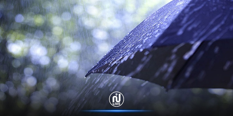 كميات الأمطار المسجّلة خلال الـ24 ساعة الفارطة (صور)