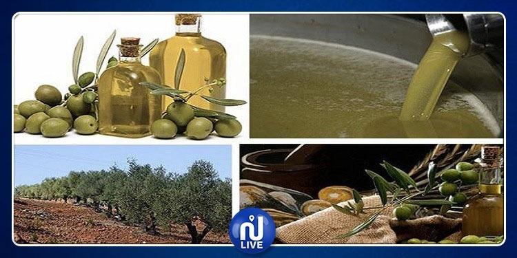 Huile d'olive: L'Europe monopolise 70% des exportations