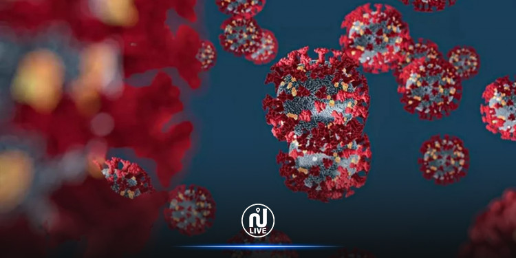 ظهور سلالة جديدة لفيروس كورونا في أوروبا