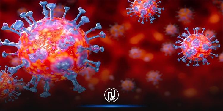 اكتشاف علاج طبيعي  يقضي على فيروس كورونا