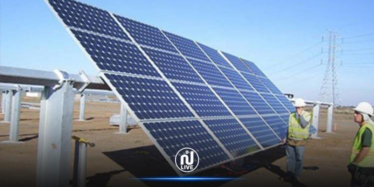 450 مؤسسة في الطاقة البديلة مهددة بالإفلاس