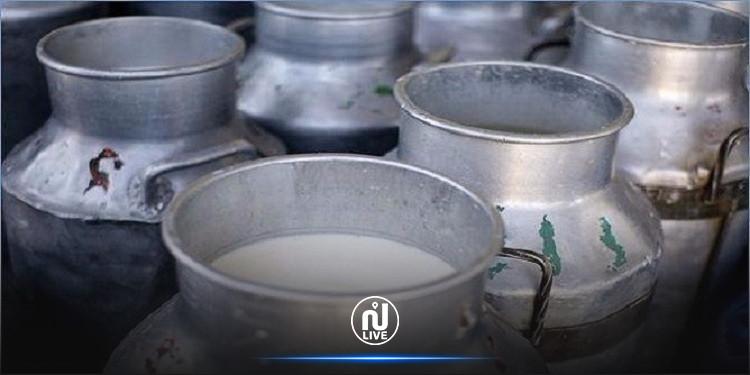 جندوبة : مراكز تجميع الحليب بجندوبة تقرر إيقاف عملية التجميع