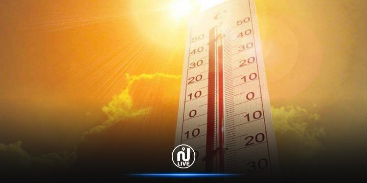 الحرارة تصل الى 47 درجة مع ظهور الشهيلي