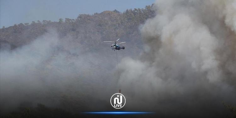 تركيا تحترق...