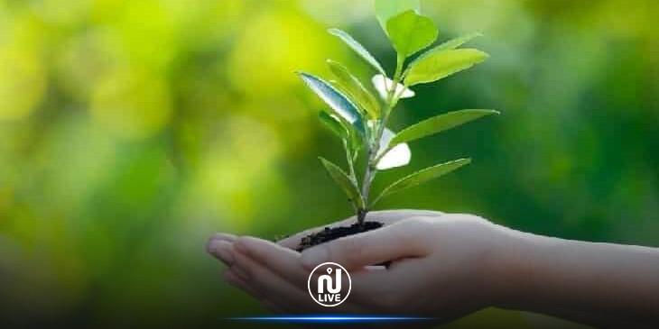 نحو إدراج مادة التربية البيئية ضمن المناهج التعليمية في تونس