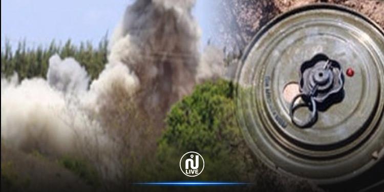 Kef : Un militaire blessé dans l'explosion d'une mine