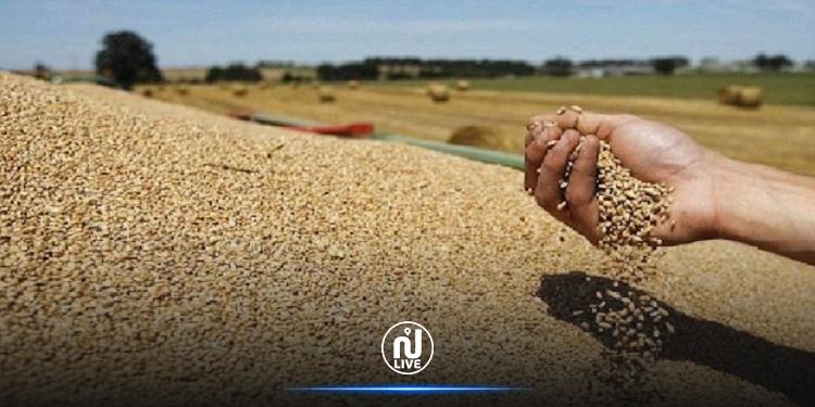 Cette saison la récolte céréalière s'élève à 16,4 millions de quintaux