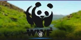 Bizerte s'engage à lutter contre la pollution plastique dans le cadre d'une initiative du WWF