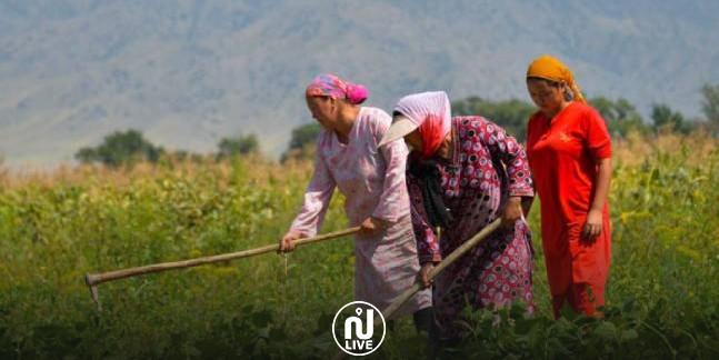 Les femmes représentent 80% de la main d'œuvre dans le secteur agricole et 47 d'entre elles ont trouvé la mort