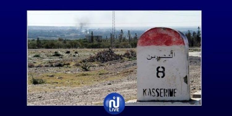 القصرين: اليوم توزيع أغنام على عائلات معوزة ومتضررة من الإرهاب