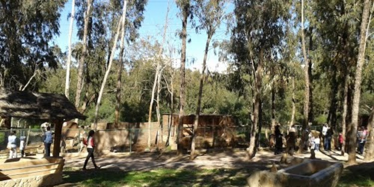 Des défenseurs de l'environnement réagissent à la construction d'une route au parc Farhat Hached
