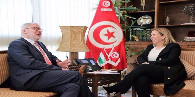 تعزيز التعاون الثنائي في مجال السياحة محور لقاء وزيرة السياحة بسفير المجر بتونس