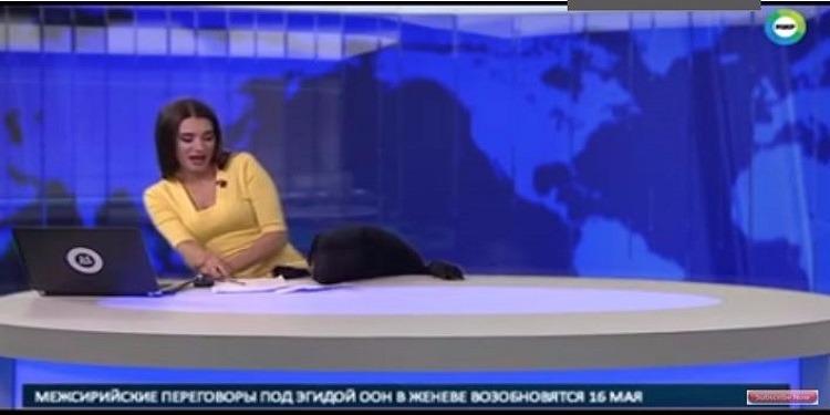 روسيا: أثناء بث مباشر.. كلب يقتحم استوديو الأخبار  (فيديو)