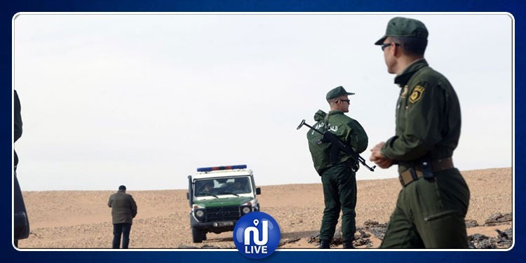 الجزائر: تفكيك شبكة دولية للإتجار بالمخدرات كانت تُخطط لدخول تونس