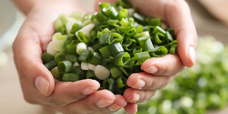 أبرز فوائد البصل الأخضر لصحتك