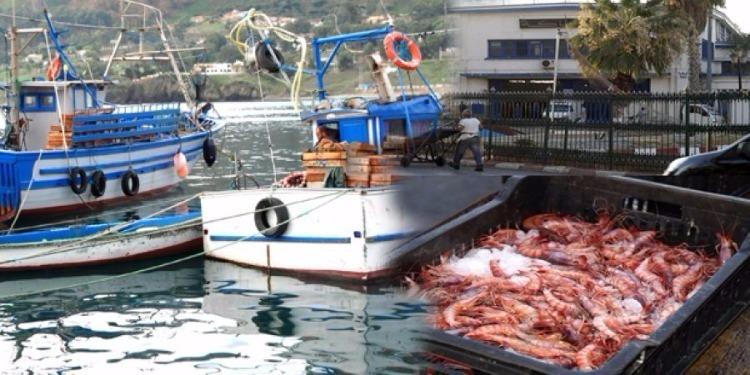 تسجيل تطور في إنتاج الصيد البحري وتربية الأحياء المائية بـ47 %