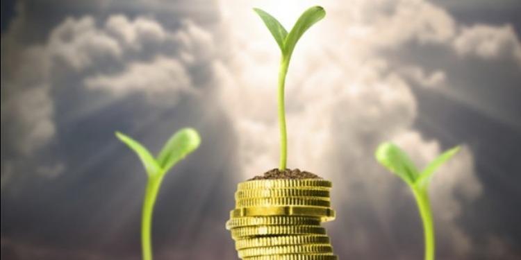 وزارة الفلاحة تؤكد تراجع قيمة الإستثمار الفلاحي الخاص المٌصرح به