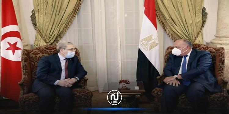وزير الخارجية يجري مباحثات ثنائية مع نظيره المصري في القاهرة