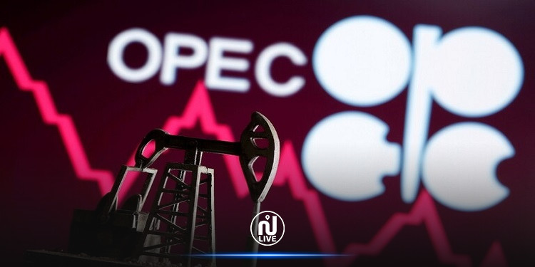 أسعار النفط في هبوط