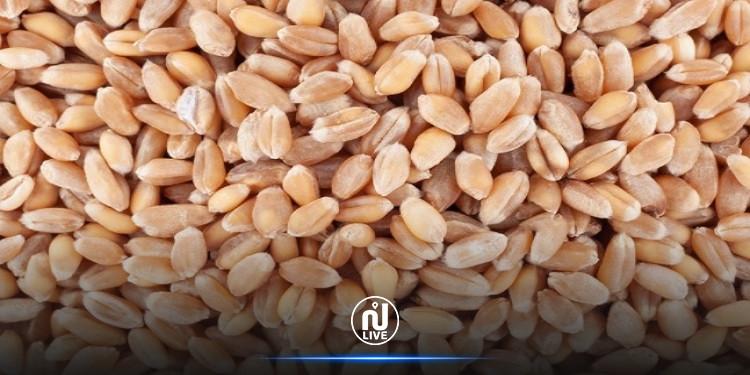 التّرفيع في أسعار الحبوب لصابة 2021