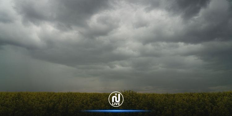 طقس الإثنين: أمطار رعديّة متفرقة وضباب محلّي في الصباح