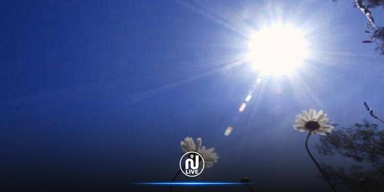 اليوم: الحرارة تصل إلى 48 درجة!