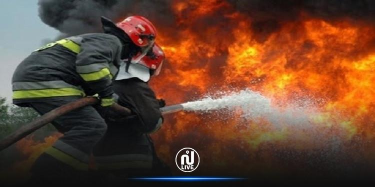 جندوبة:  حريق بغابات فرنانة يأتي على 40 هكتار من 'الفرنان'