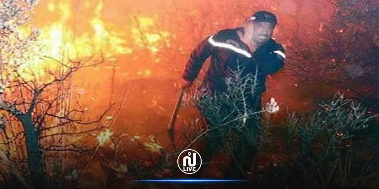 القصرين: حريق بالمنطقة العسكرية المغلقة بجبل مغيلة