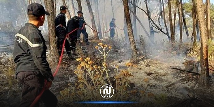 غار الدماء: السيطرة  نهائيا على حريق غابات فج حسين