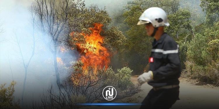 الكاف: حرائق جبل تكرونة  تقترب من التجمعات السكنية