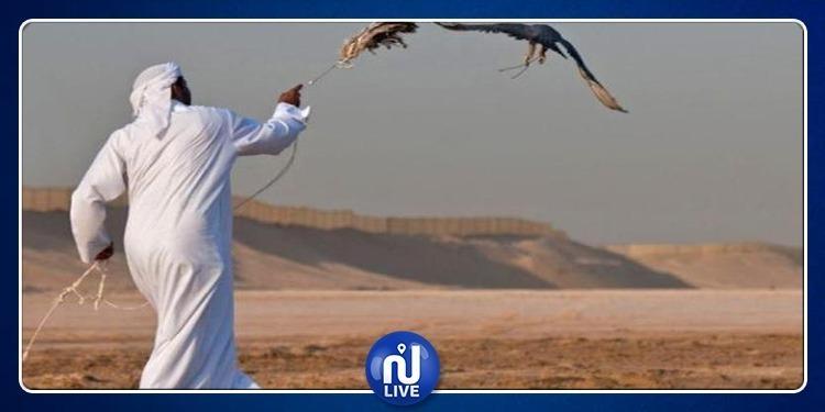 ما السرّ وراء صيد الأمراء الخليجيين لطائر 'الحبارى' في صحراء تونس ؟