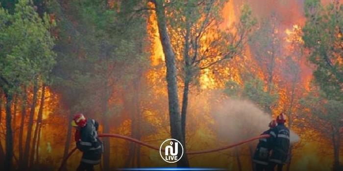 بنزرت: حريق بغابة الرمال يأتي على مساحة كبيرة من الأشجار