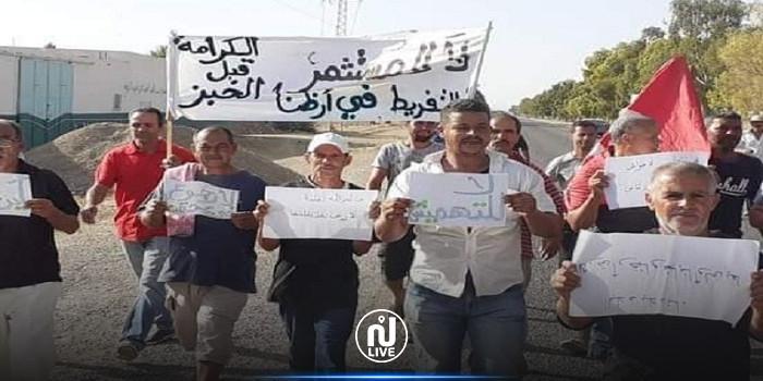 القيروان: عمال ضيعة فلاحية يتوجهون في مسيرة على الأقدام إلى قصر قرطاج