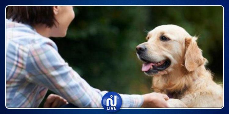 دراسة: الكلاب تفسد علاقات أصحابها بشركاء حياتهم