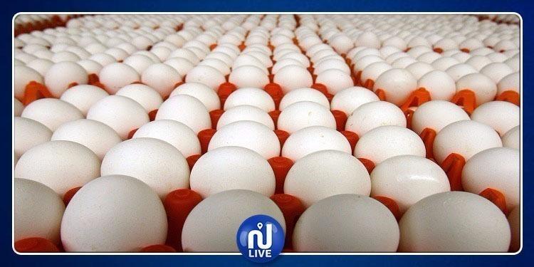 مع اقتراب رأس السنة: ضخ 5 ملايين بيضة بسعر 210 مليم للواحدة