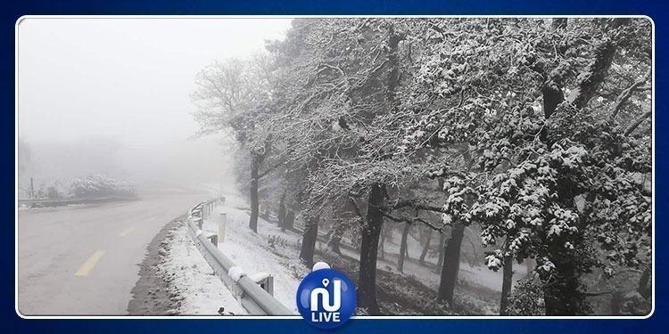 32 طريقا مقطوعا جرّاء الثلوج وفيضان الأودية بهذه الولايات