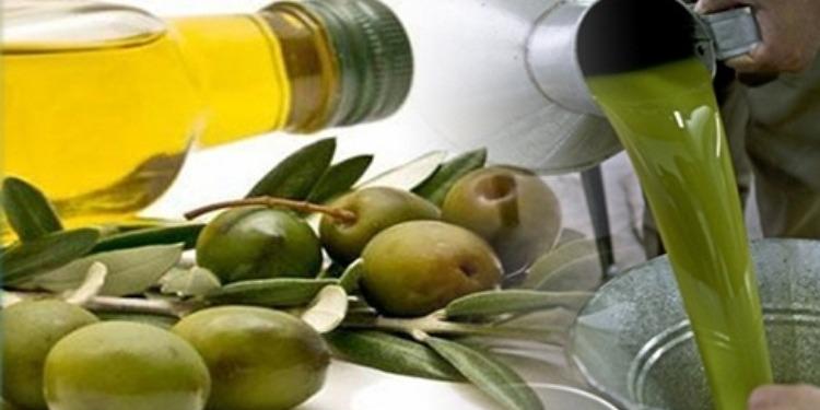 الميزان التجاري الغذائي يحقق فائضا بفضل زيت الزيتون