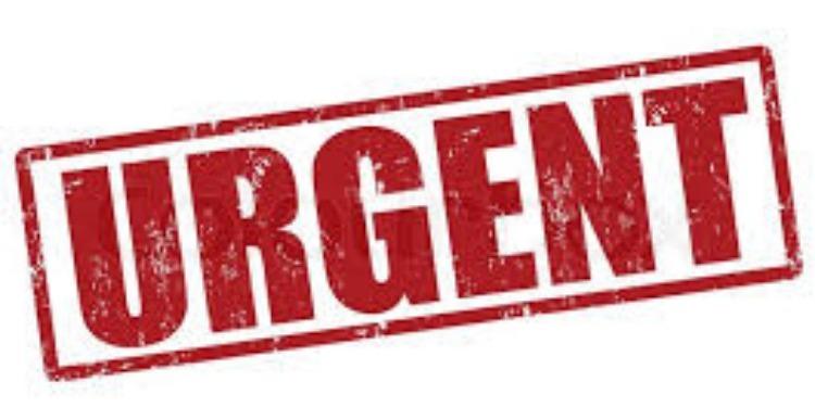 Urgent: Huit gardes nationaux tombent en martyrs dans une fusillade à Ghardimaou
