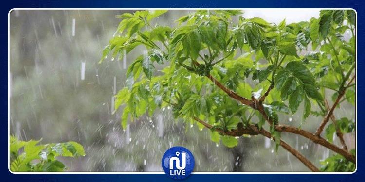 كميات الأمطار المسجَّلة بمختلف الولايات