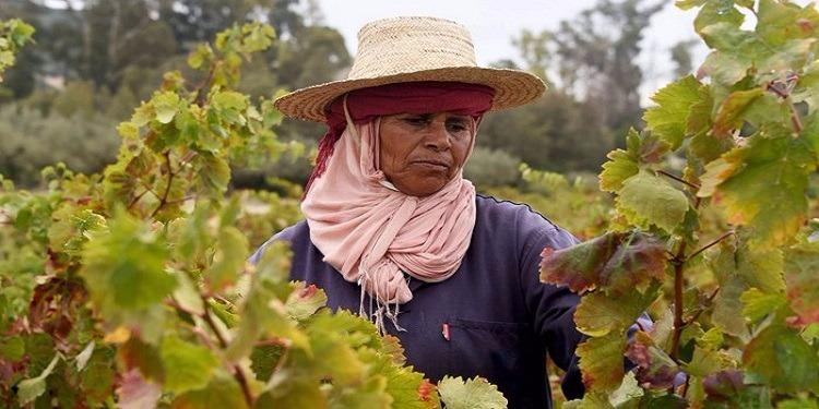 60 % من النساء الريفيات يعانين الجوع وسوء التغذية
